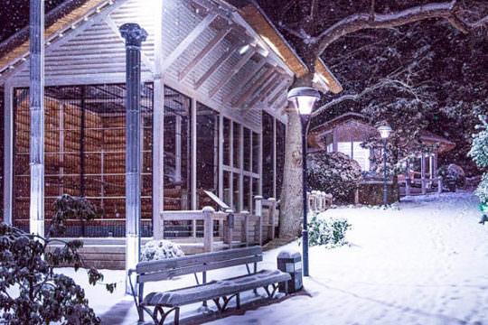 Отдых зимой в «Ялта Интурист»